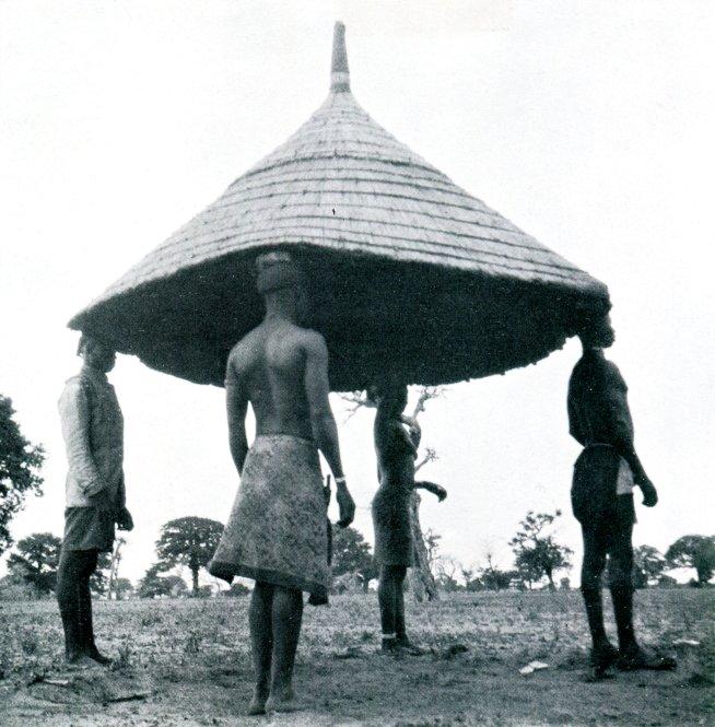http://mpzga.free.fr/habevol/Guinee.jpg